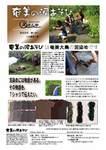 「奄美の泥あそび」紹介チラシ(暫定版)
